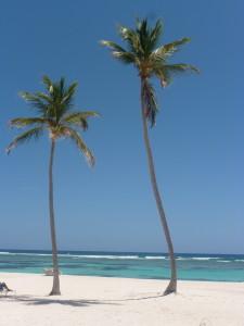 Club Med_Plage
